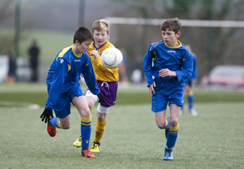Under 12 Interleague Game v Wexford 26th January image